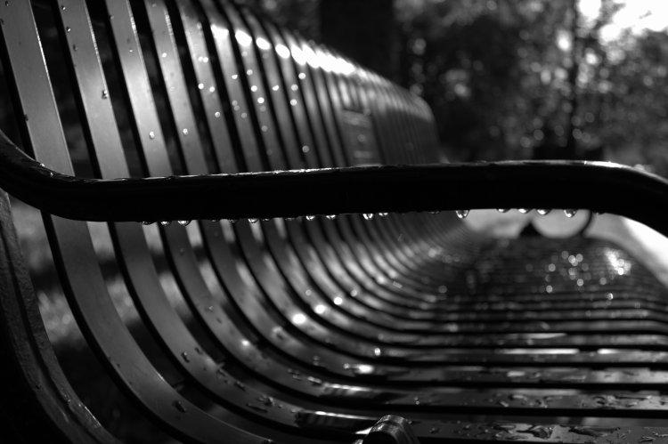 Rain Drops on a Bench BW